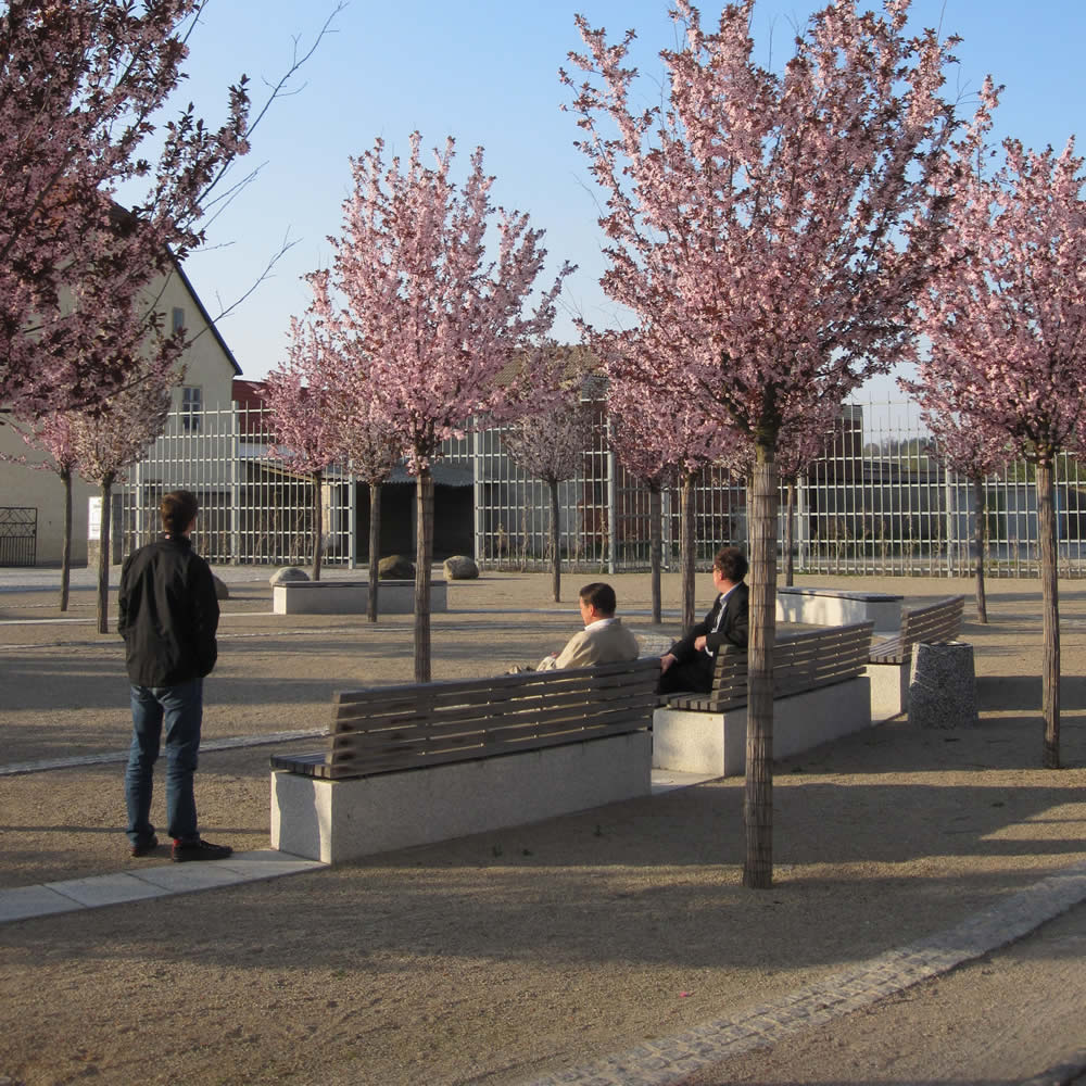 Neugestaltung Martinsplatz Schlieben